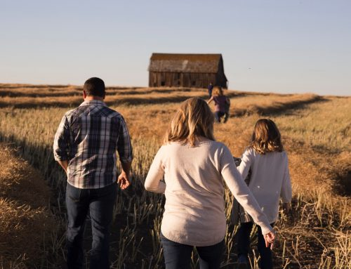 Summer in Alberta: Activities for the Whole Family!